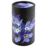 Forget-Me-Not Scattering Tube XS