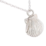 Seashell Cremation Jewelry